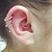 Image 7: Ear Piercing 8